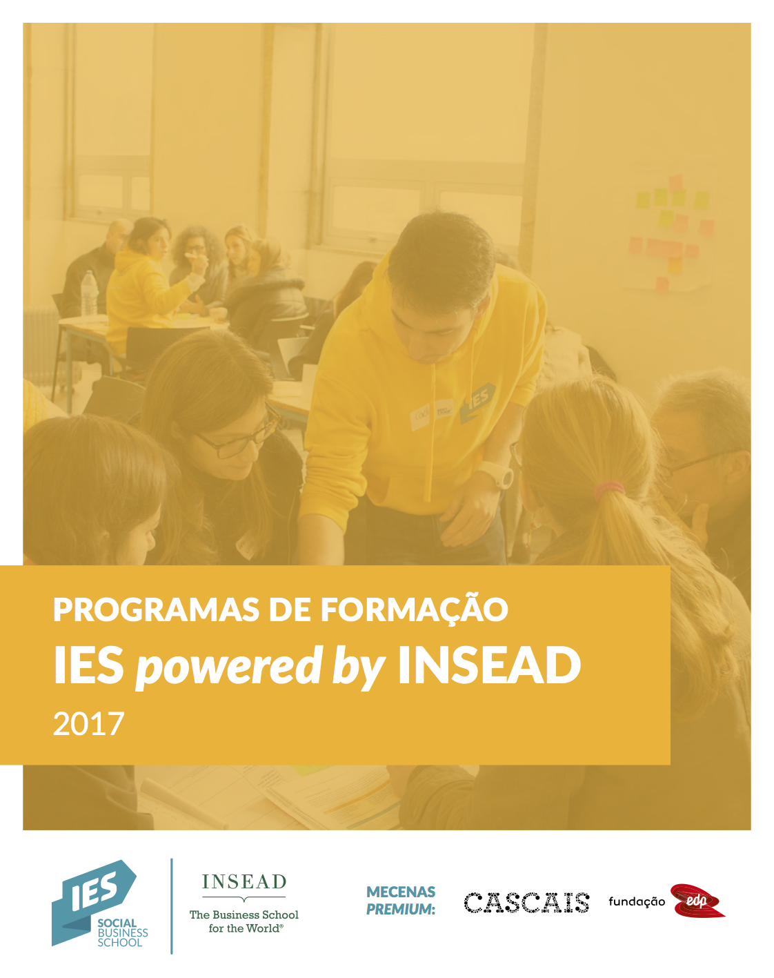Brochure for IES  powered by  INSEAD Programmes 2017