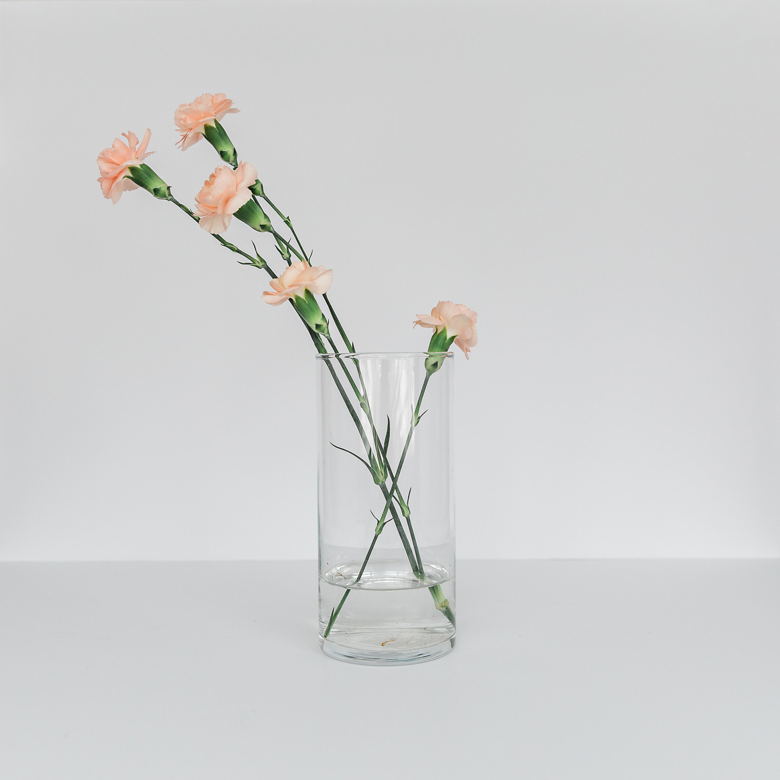 Cylinder Vase  height: varies 6 inches to 12 inches >>>$1.00 each<<<