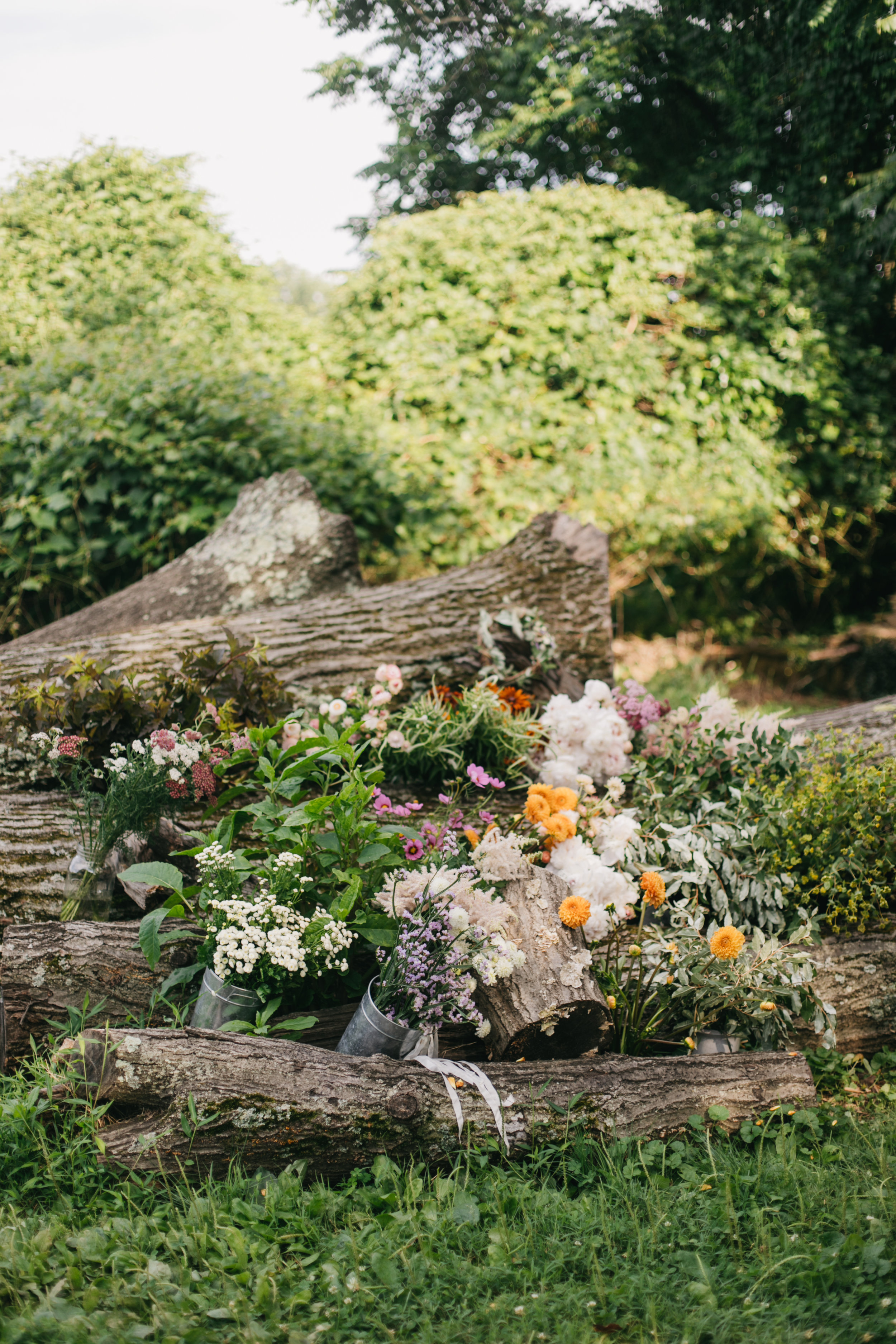 Darling and Daughters Florals, Baltimore, Washington DC, Events, Monthly, Flower Subscriptions, Small Events, Custom Flowers, Summer Butterbee Farm-3.jpg