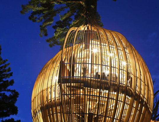 treehouse-ed01.jpg