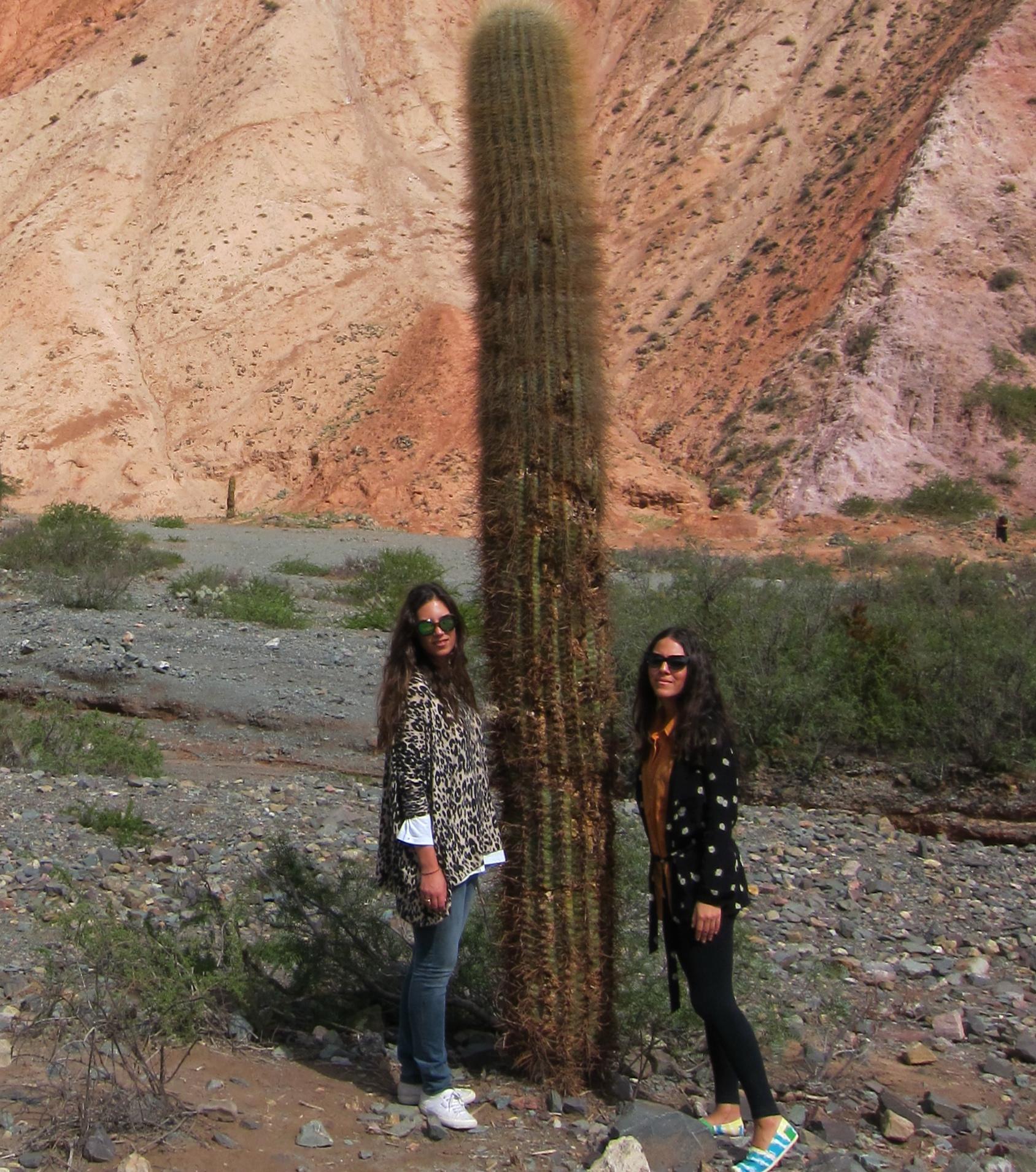 Tatiana-Dana-Jujuy-cactus.jpg