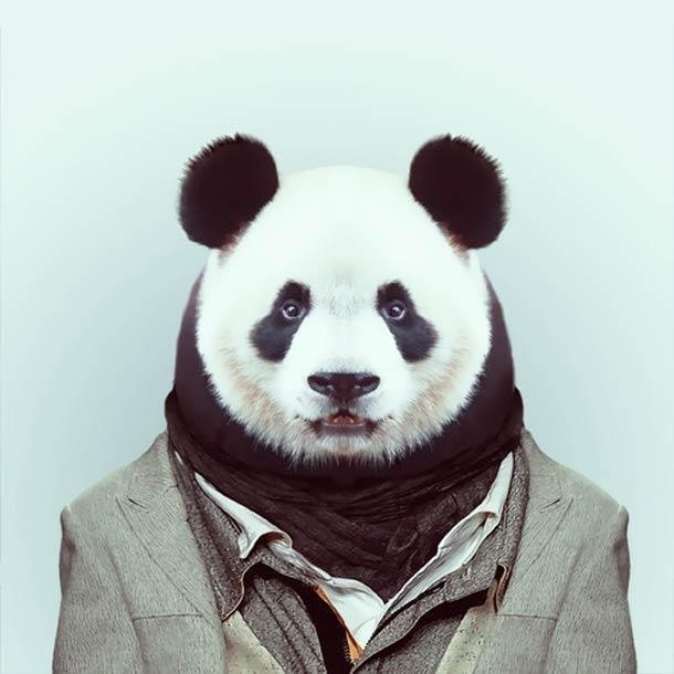 Zoo-Portraits-Yago-Partal-3.jpg