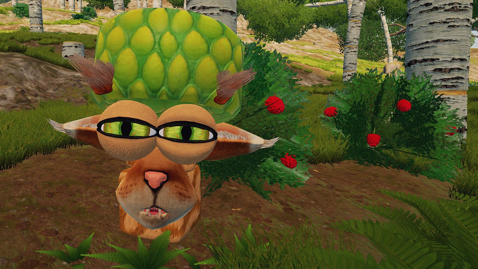 suspicious_hat_cat.jpg