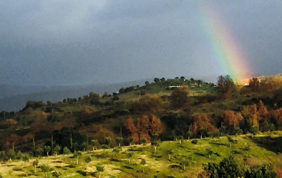 Regenbogen.jpg