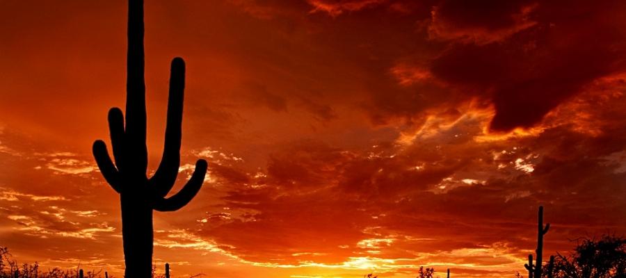 Sunset pic.jpeg