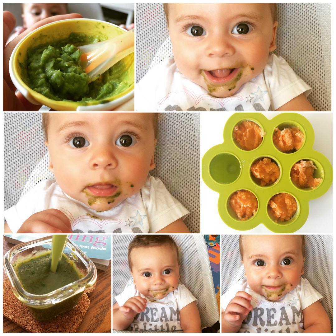 A very proud mama moment :) Theo started experimenting with solids a little over a week ago. We started with #avocado, of course, to solidify his Mexican roots! and have since tried sweet potato, carrots, peaches, banana, pears, and now #spinach! He's loved every one of them. I've also managed to #bulkcook some veggies into 1-2 ounce servings. Both carrots and sweet potatoes took about 1.5 hours, only because the sweet potato had to cook for an hour. And you only need a pan and blender- no fancy equipment necessary. #proudmom #firstfoods #kidsnutrition #blendingfoods #dream #theoAcampos #lazynutrition #lazynutritionist #bushwick #bushwicknutrition #healthykidfoods
