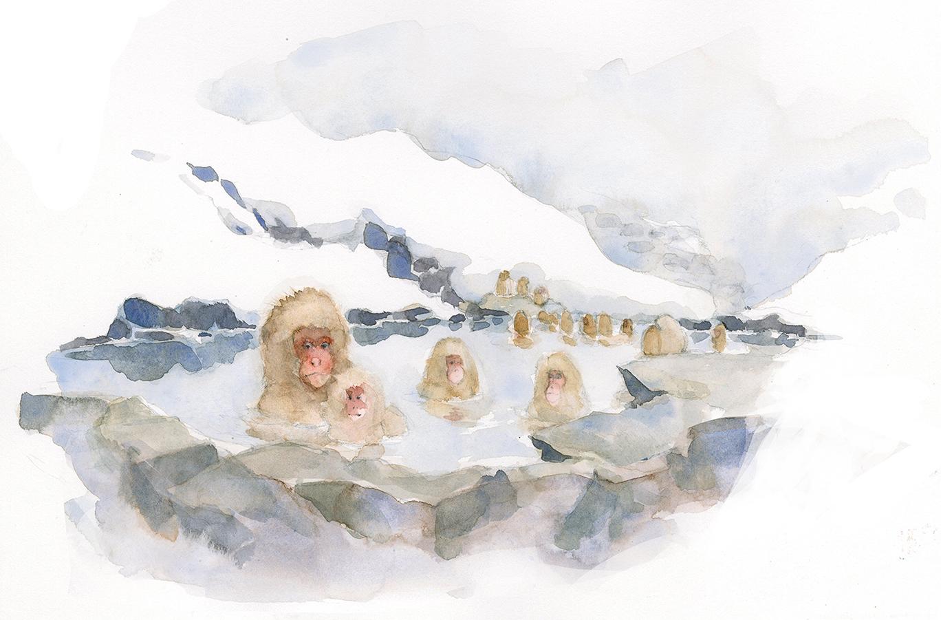 snow+monkeys.jpg