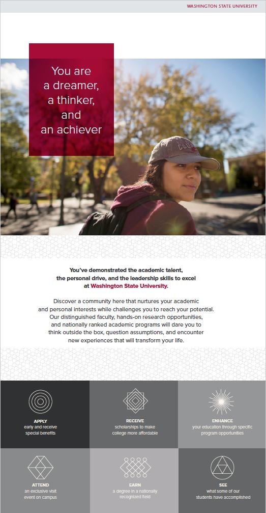 Website  design for recruiting high achieving undergrads.