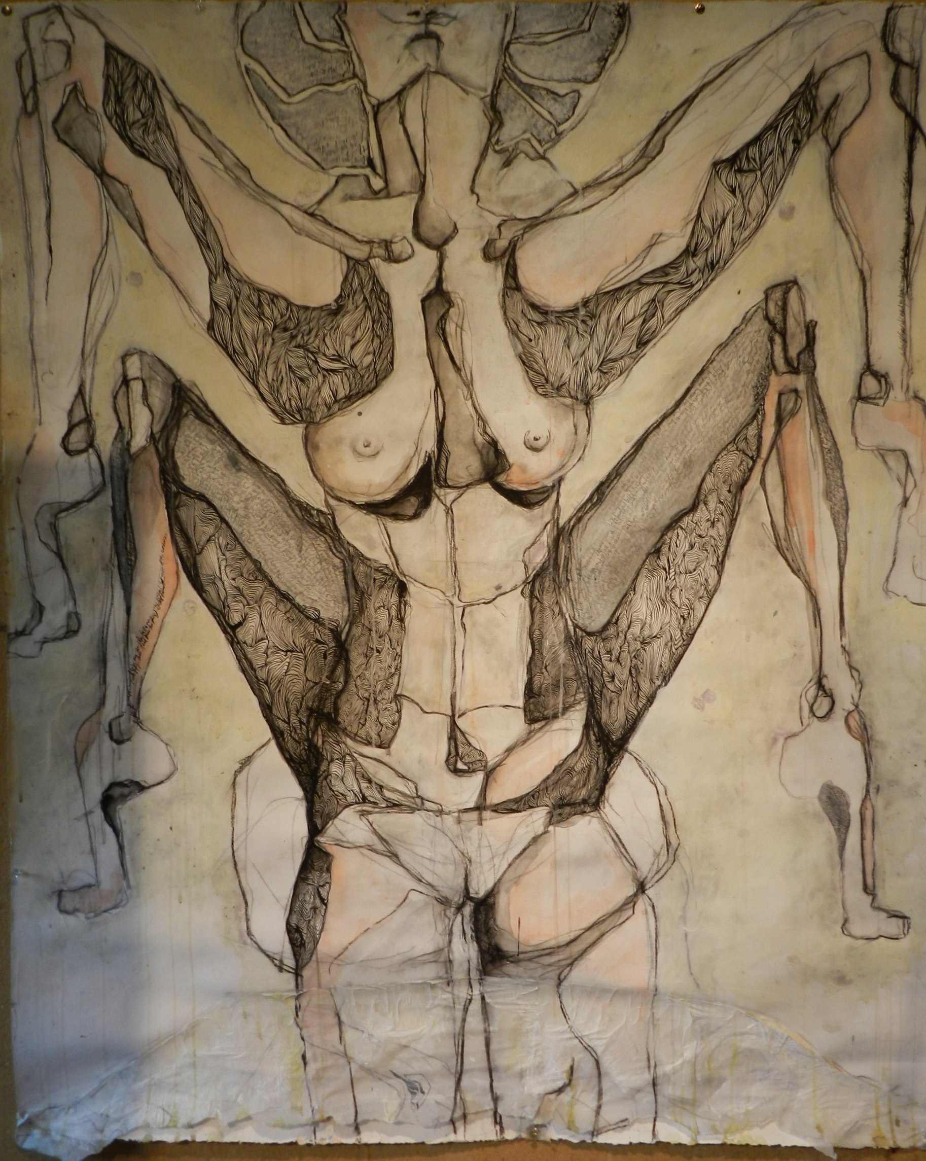 Charcoal, pen and ink and acrylic wash on paper. 2011