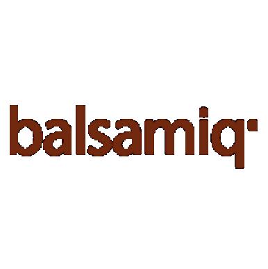 Balsamiq Mockups