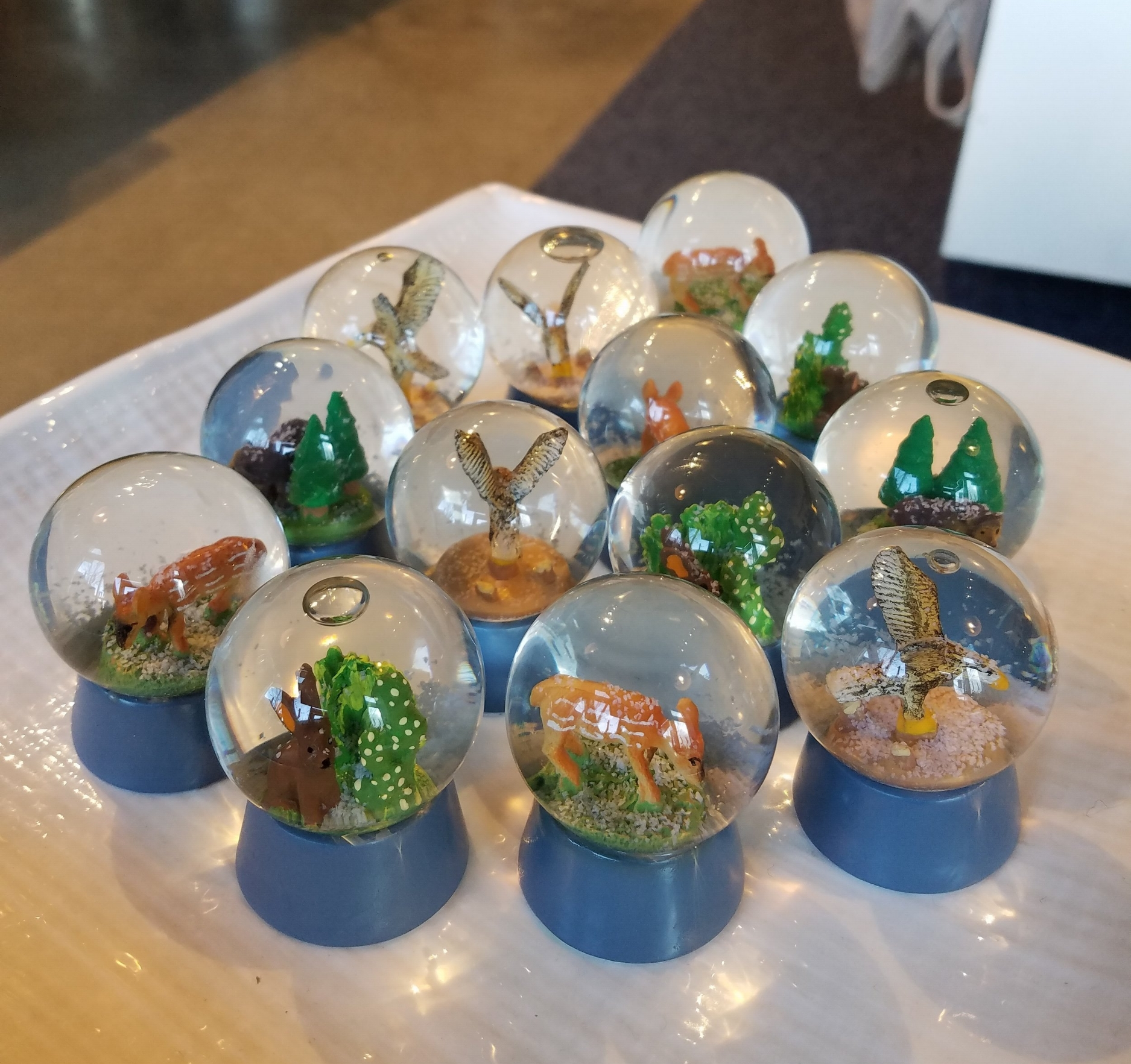 Snow Globes!!! Who doesn't love snow globes? These little guys are just $5.