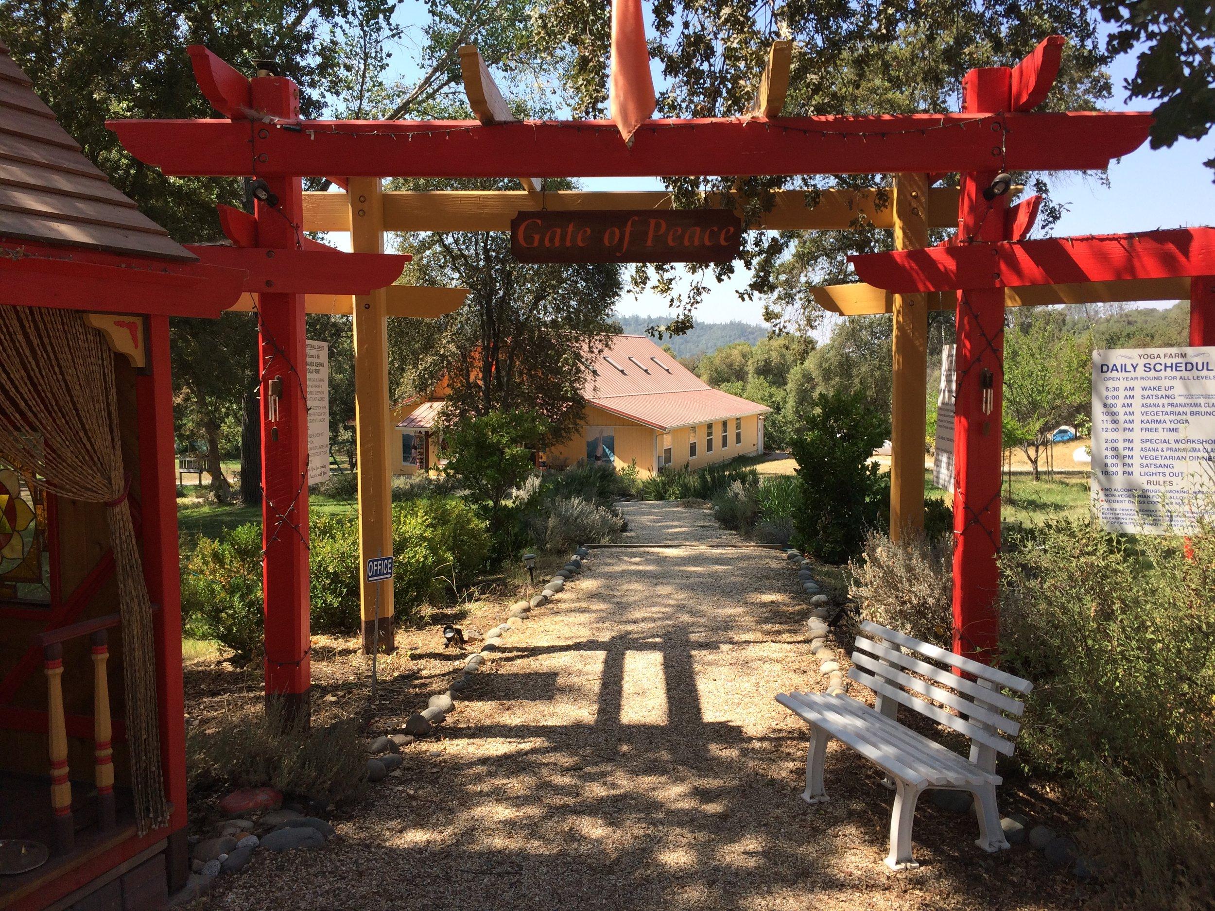 A Weekend At The Sivananda Ashram Yoga Farm Caroline Deng