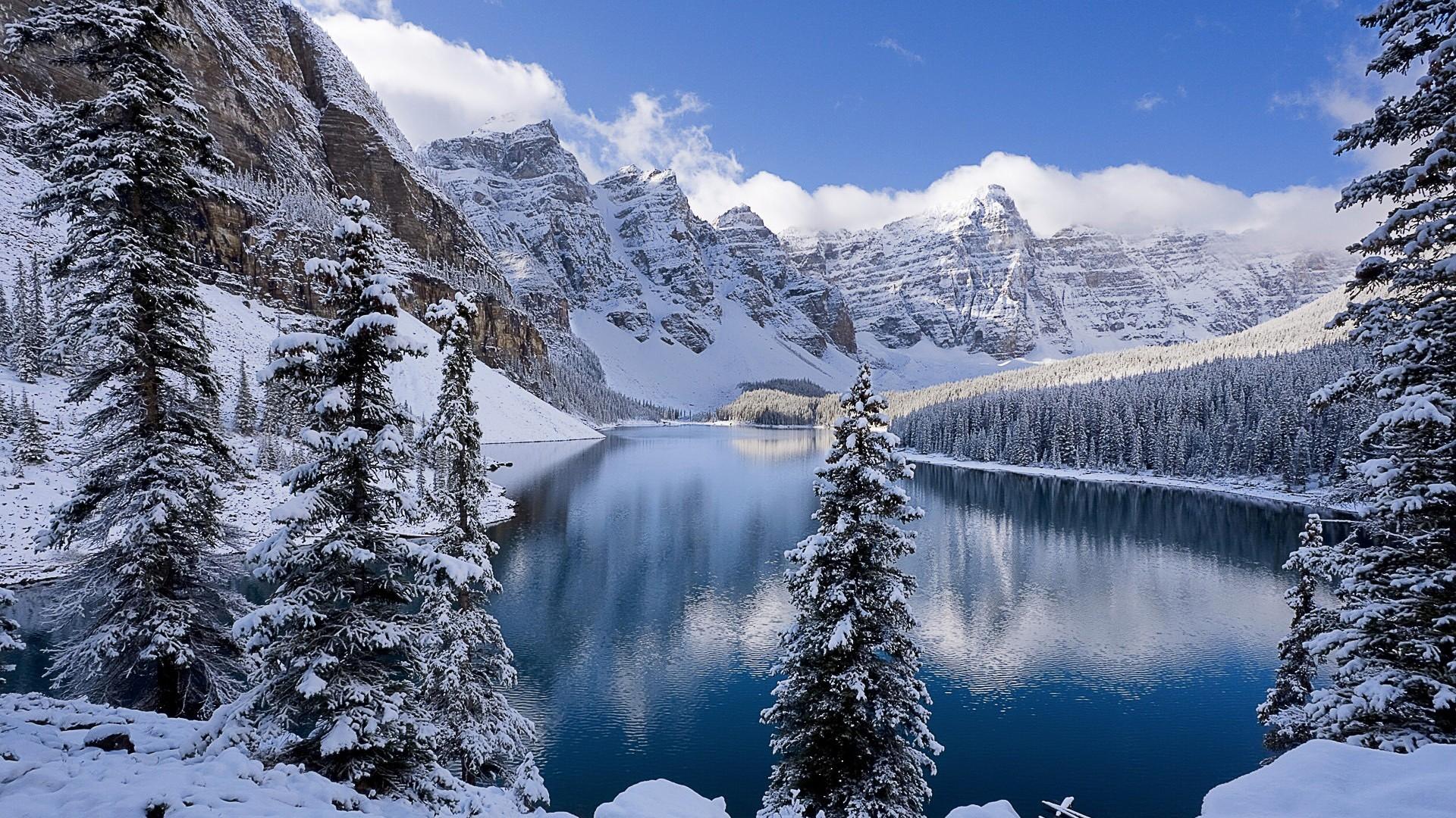 Winter: a wonderland of deathly beauty