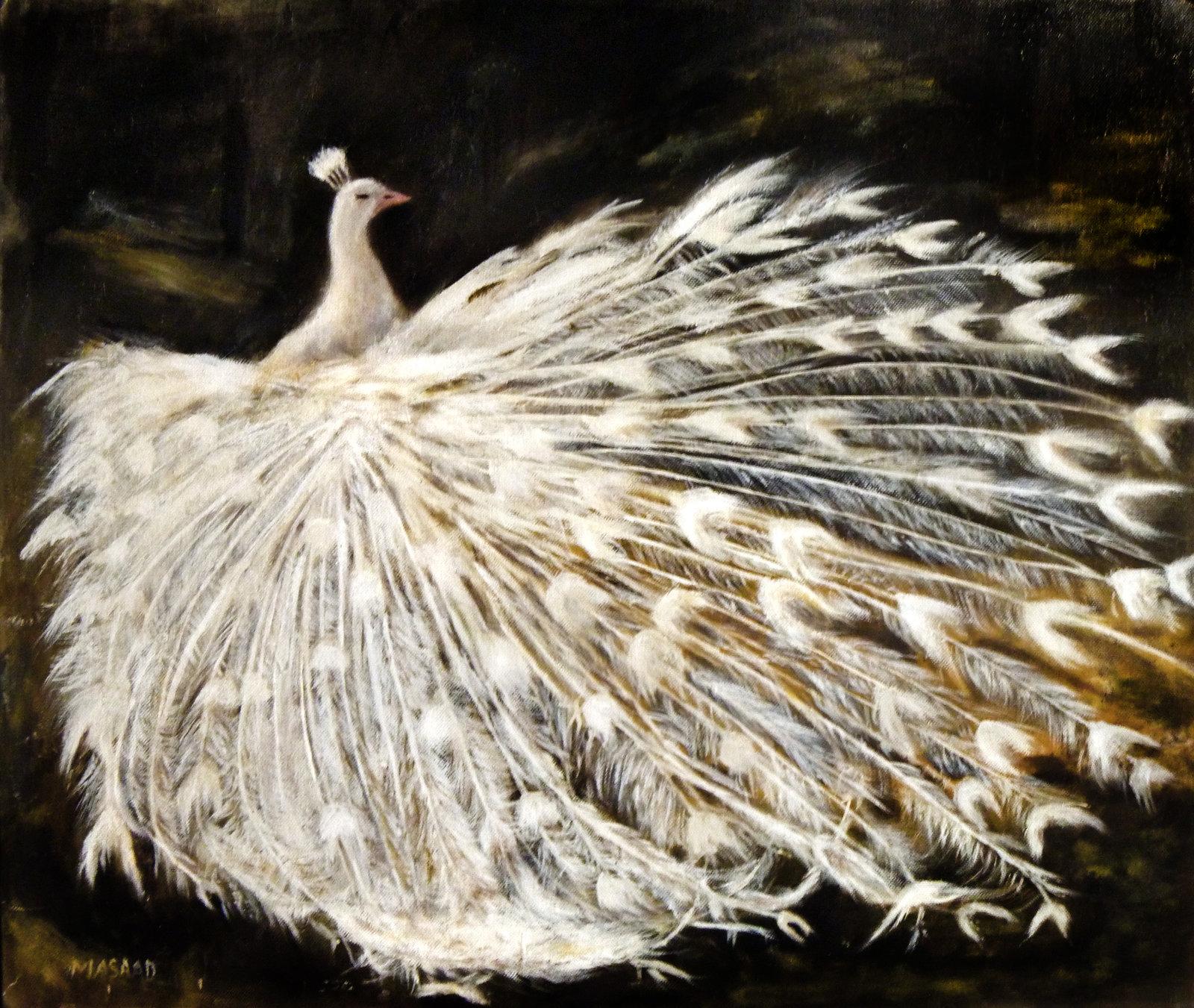 White Peacock by Massad