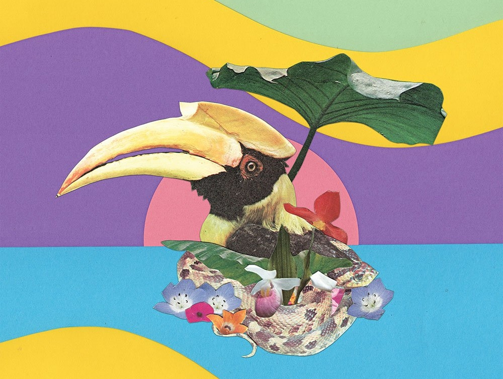 Escapism … from the cover of Monster Rally's Flowering Jungle album
