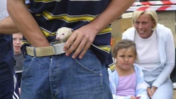 Ferrets down the trousers. Not exactly staying power, just scratchy, bitey stupidity.
