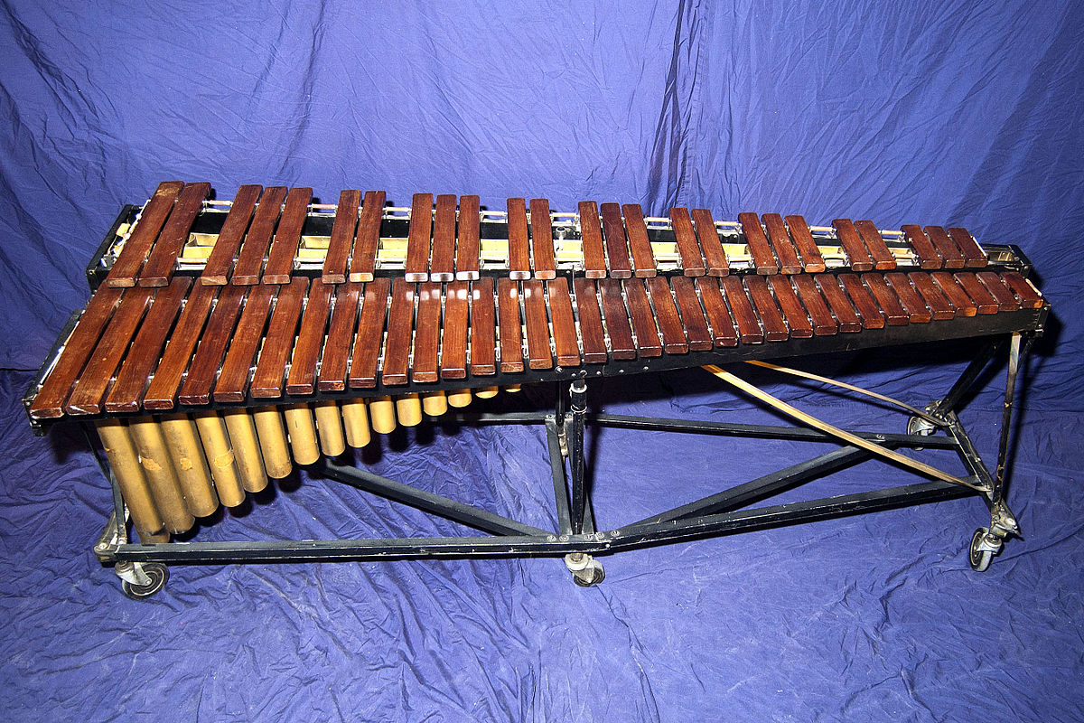 The xylorimba has a bigger range than either the xylophone or marimba