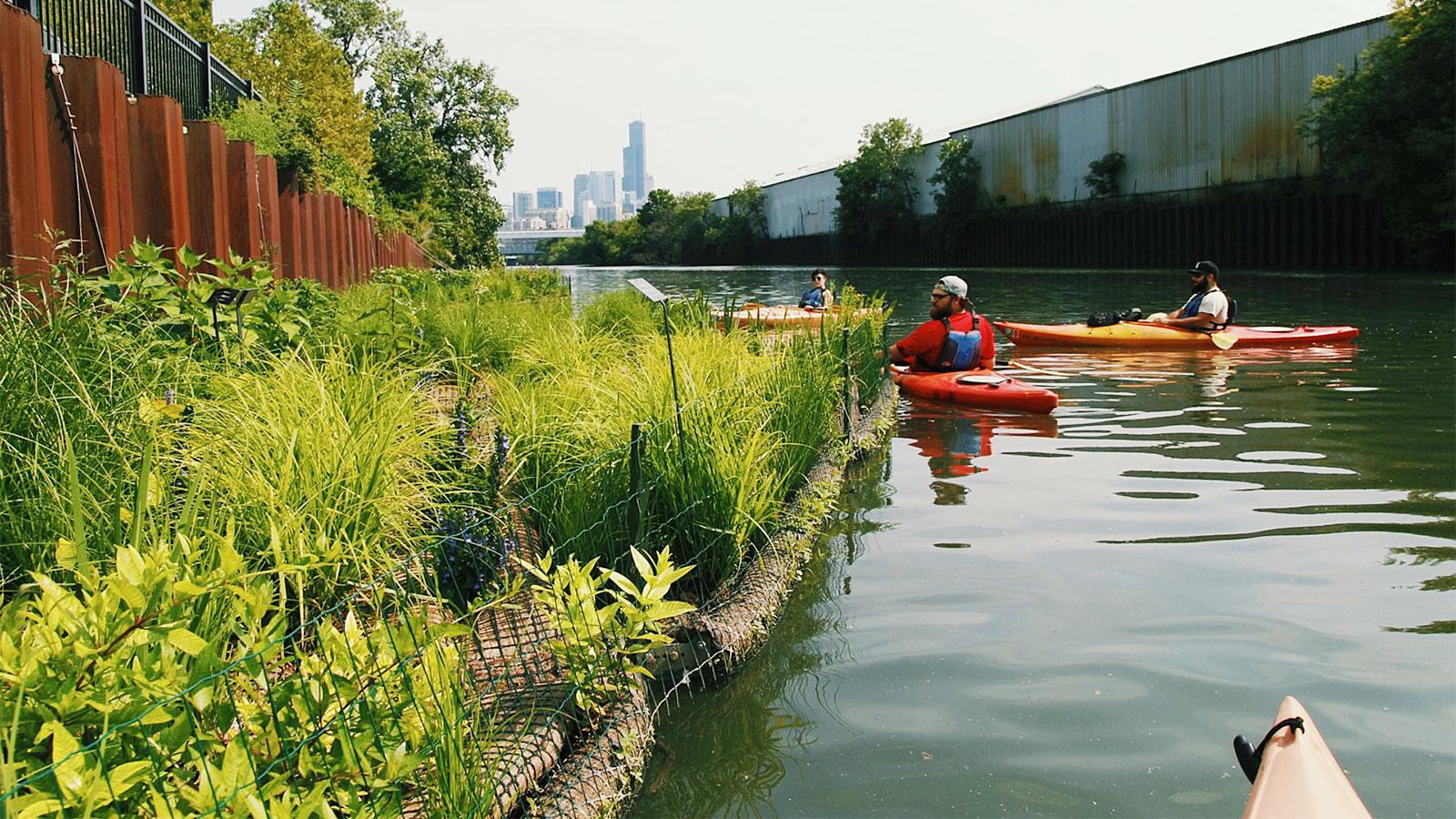 A river runs through it: in Chicago