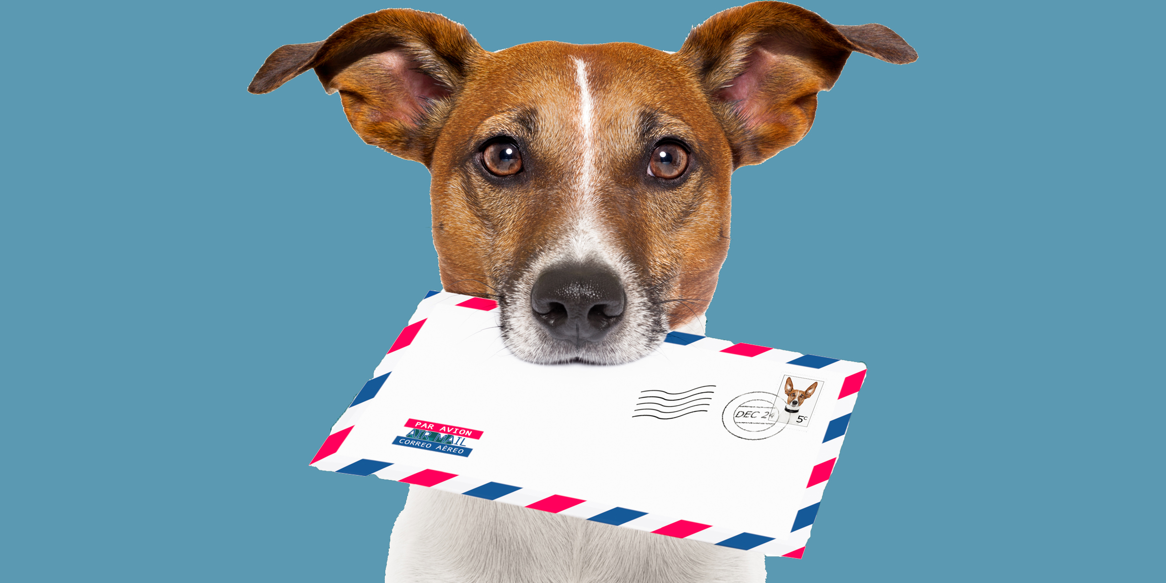 Hound of love? Indirect delivery