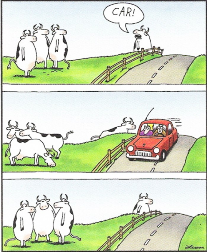 Gary Larson: 'This was more than just a cow - this was an entire career I was looking at.'