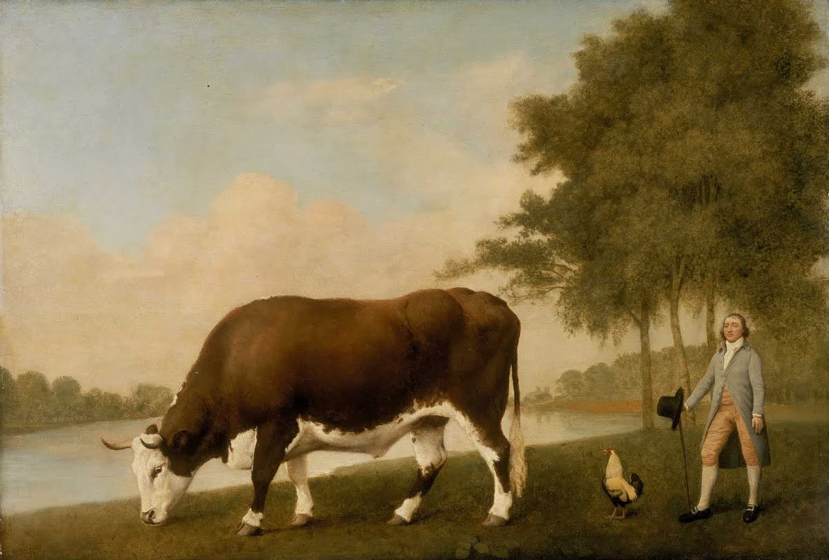 The Lincolnshire Ox by George Stubbs