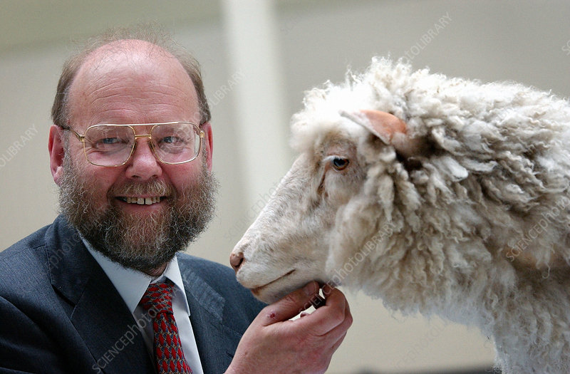 Dolly the Sheep with the far less famous geneticist Professor Ian Wilmut