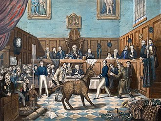 Bill Burn's donkey making an ass of him in court