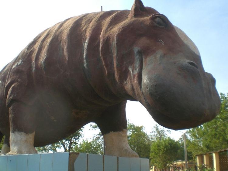 Hippo to the square: Bafoulabé in Mali
