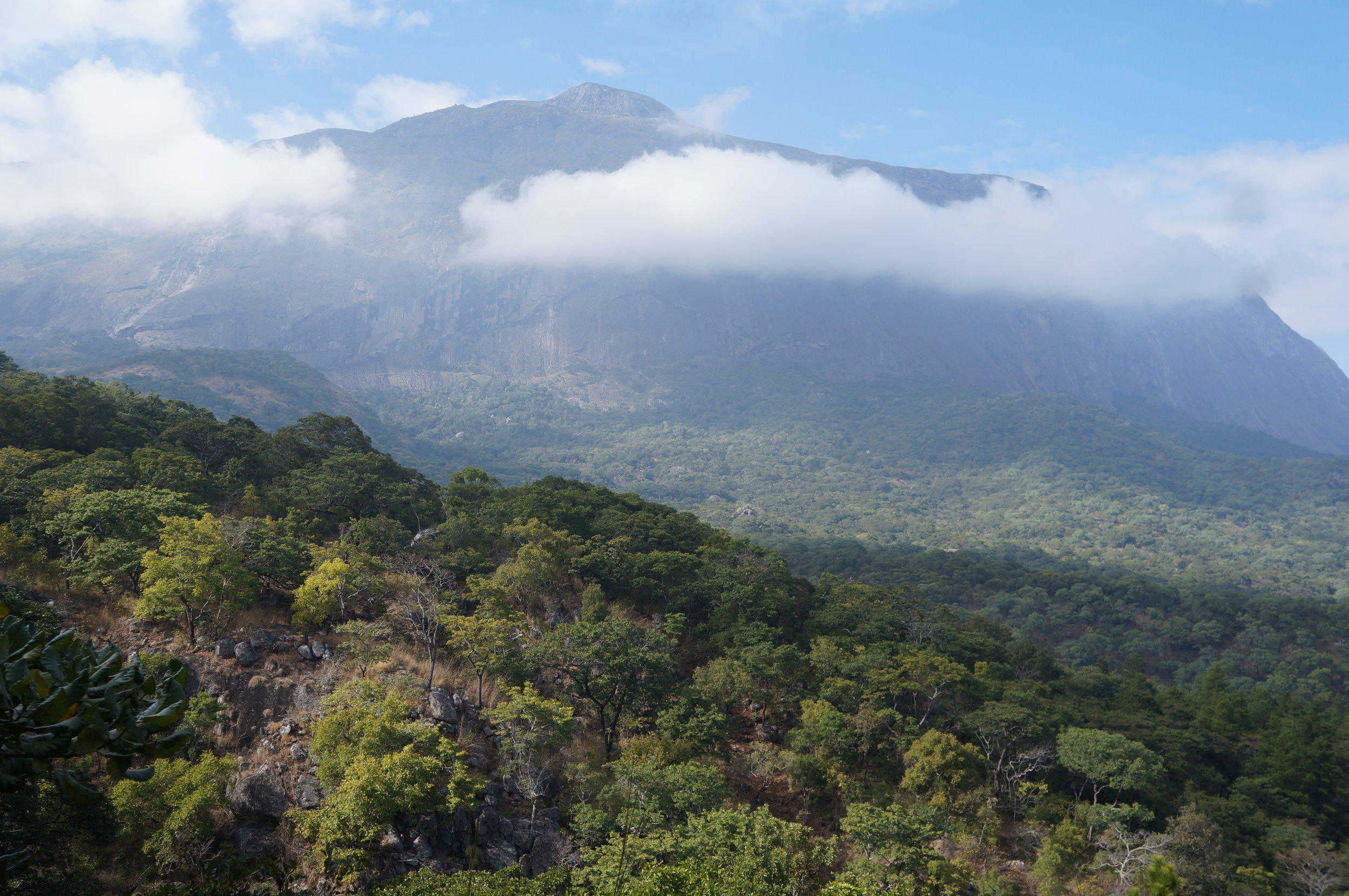 The view from the base of Mulanje. The scale of this mountain is hard to capture.