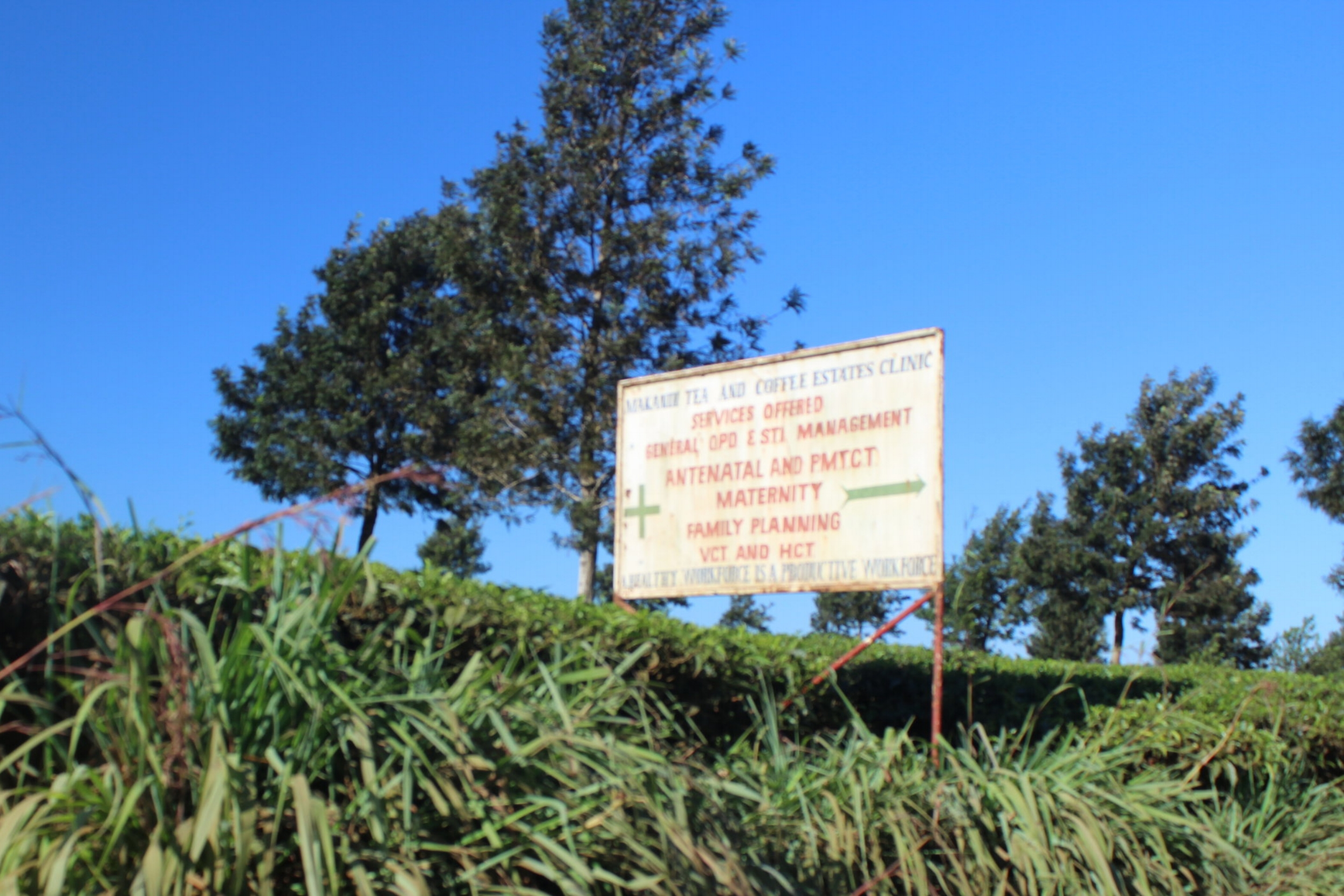 Clinic Sign