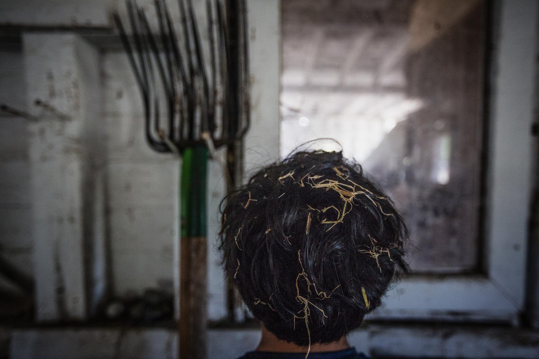 hay-hair-barn-1.jpg