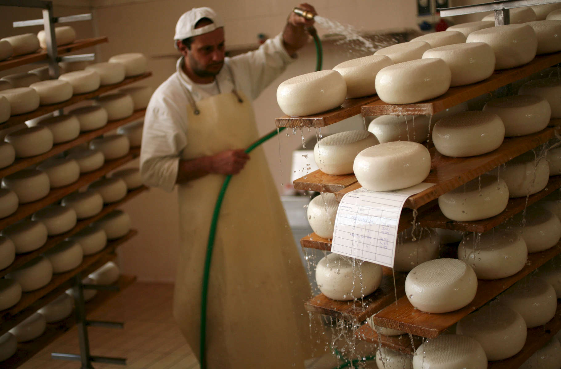 cheese-maker-artisan-1.jpg