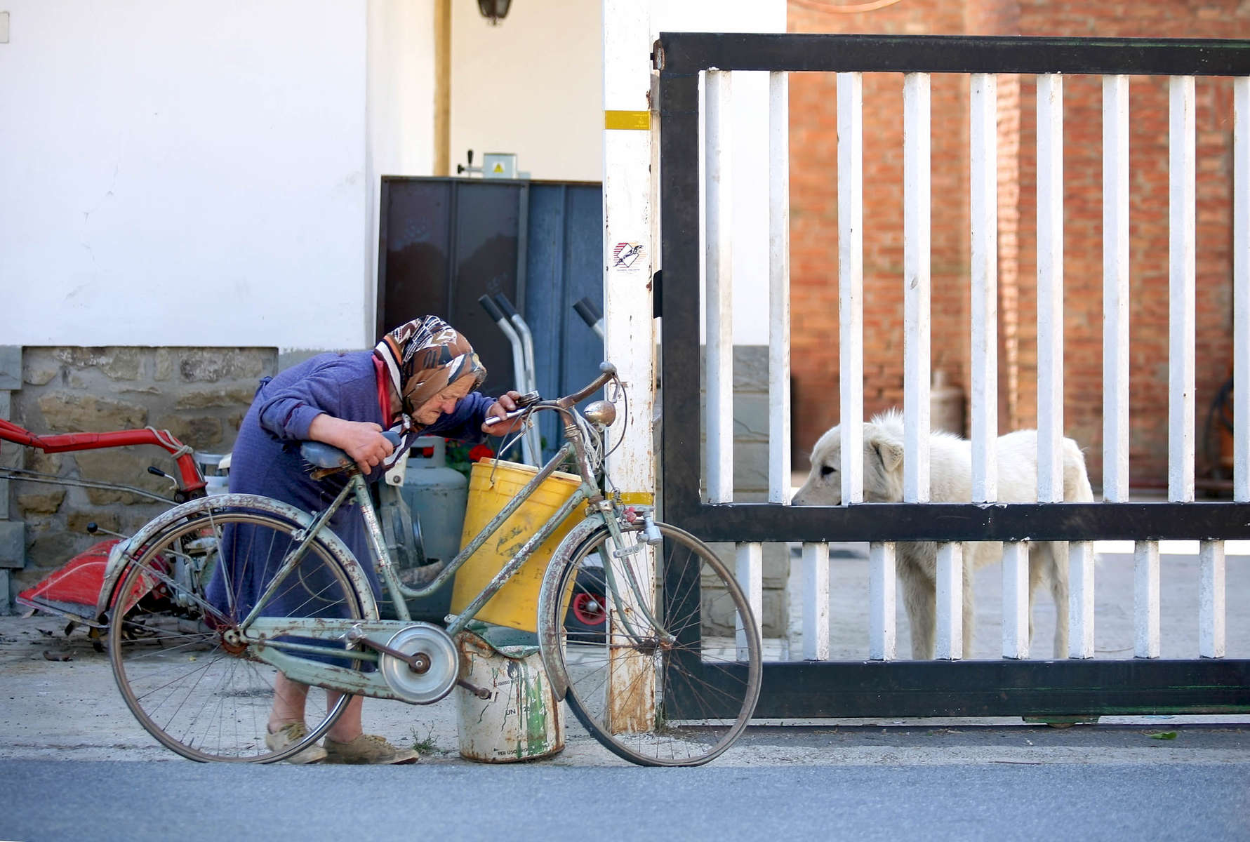 old-woman-bike-1.jpg