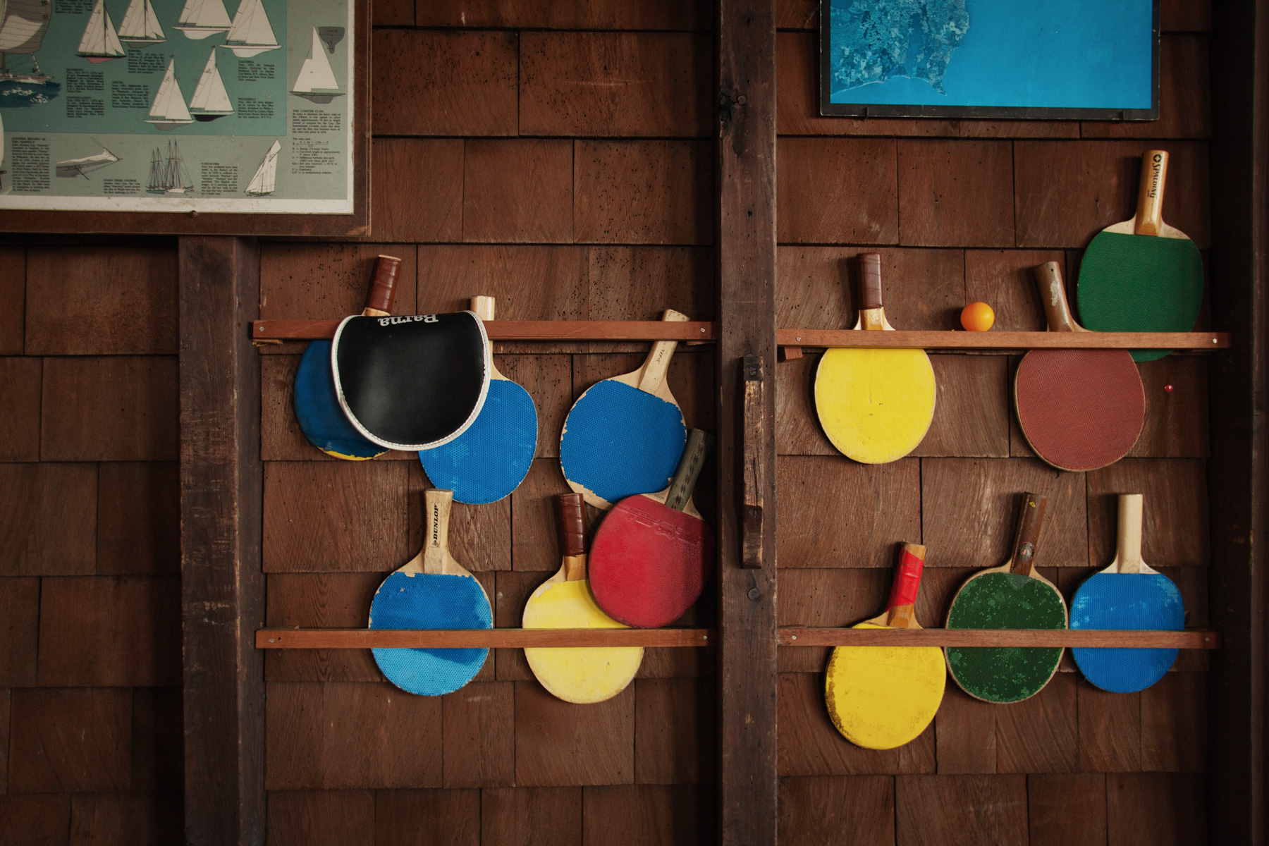pingpong-paddle-color-1.jpg