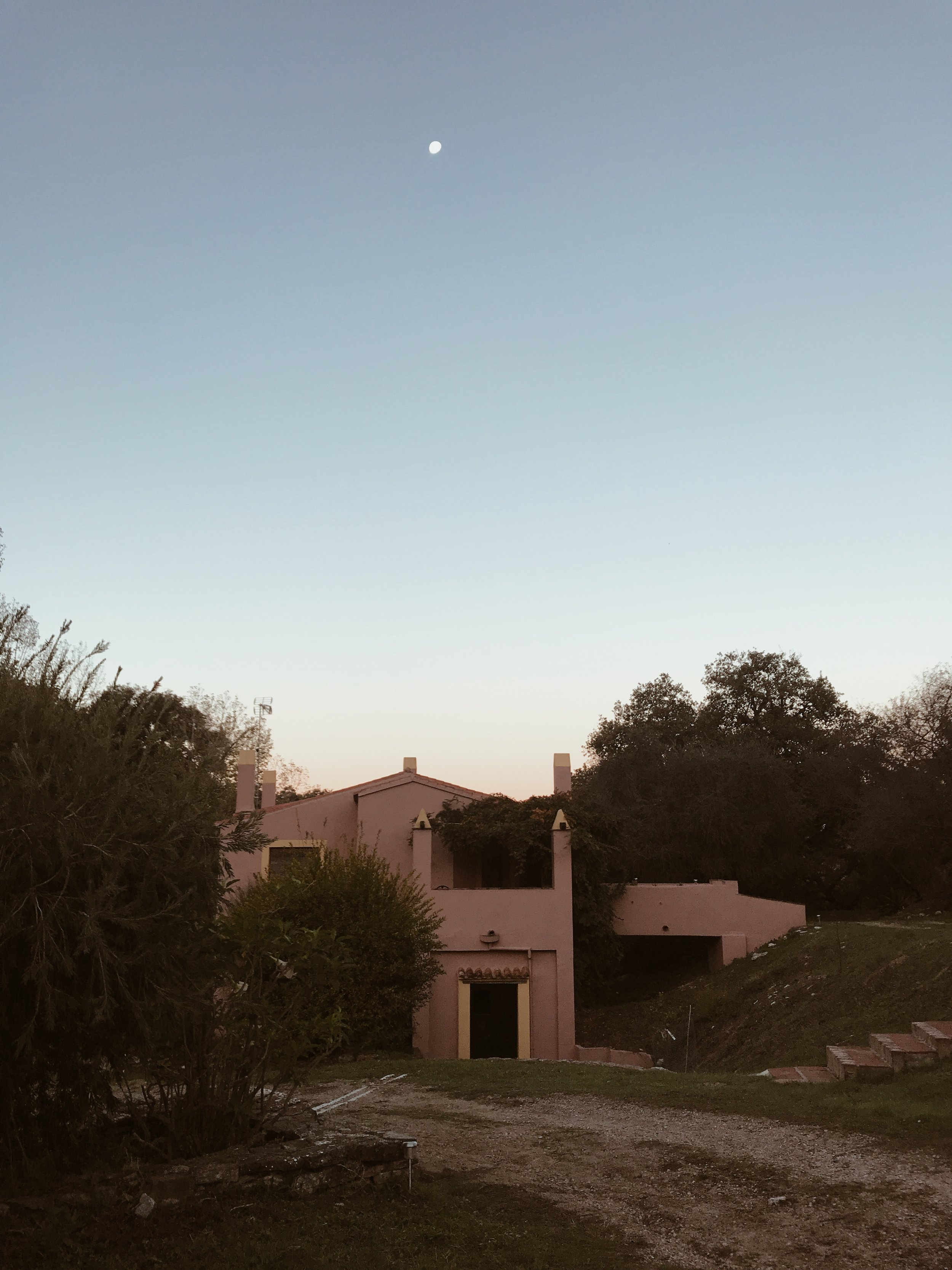 the light pink house