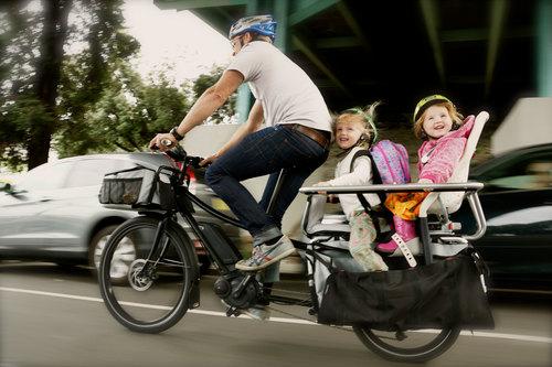 Tern Bicycles — Blue Heron Bike Shop