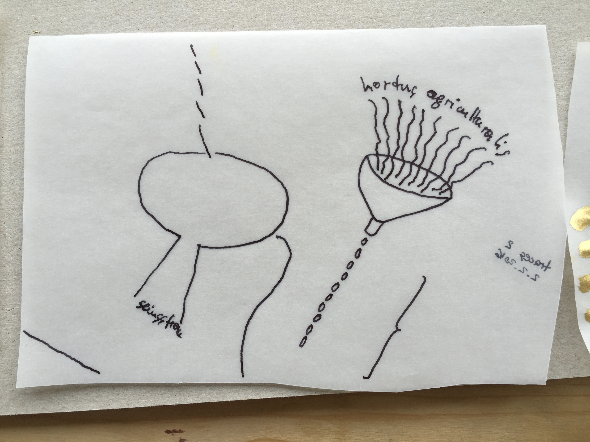 < traces ii . hortus agriculturalis > . zustand vor ueber.arbeitung