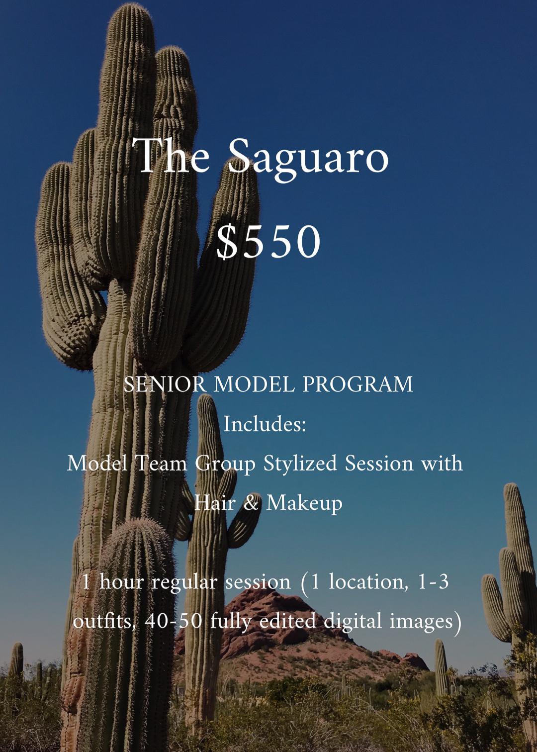 TheSaguaroClassof2020Packages_PhoenixSeniorPhotographer_SamanthaRosePhotography_-2.jpg