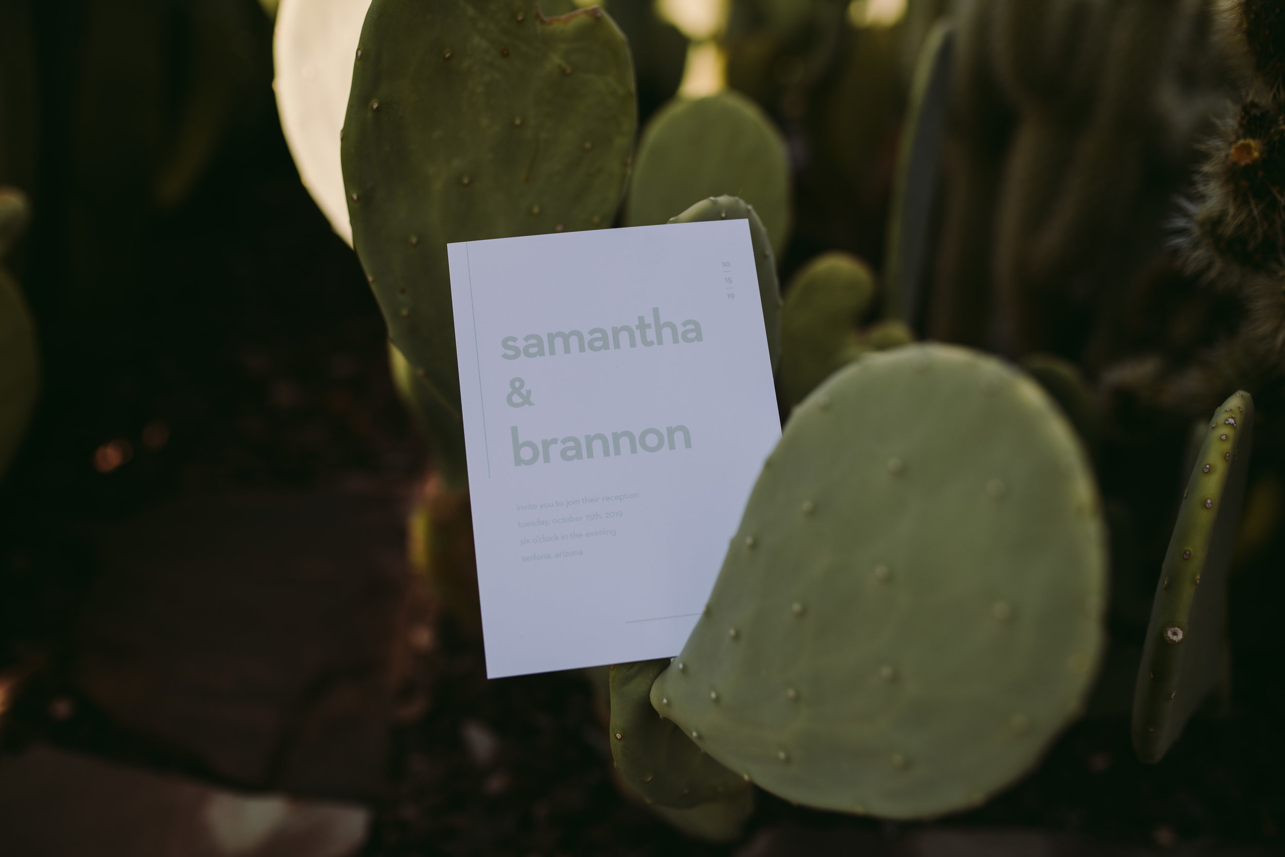 BasicInvite_Blog_CactusWeddingInvitations_PhoenixArizonaWeddingPhotographer_SamanthaRosePhotography_-5.jpg