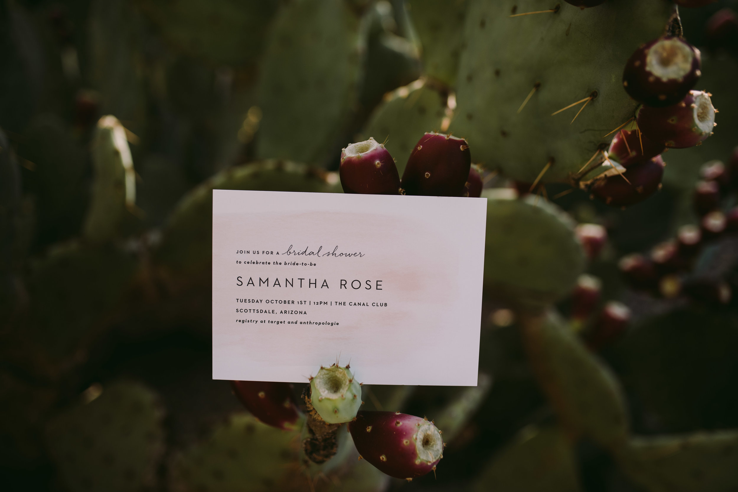 BasicInvite_Blog_CactusWeddingInvitations_PhoenixArizonaWeddingPhotographer_SamanthaRosePhotography_-10.jpg