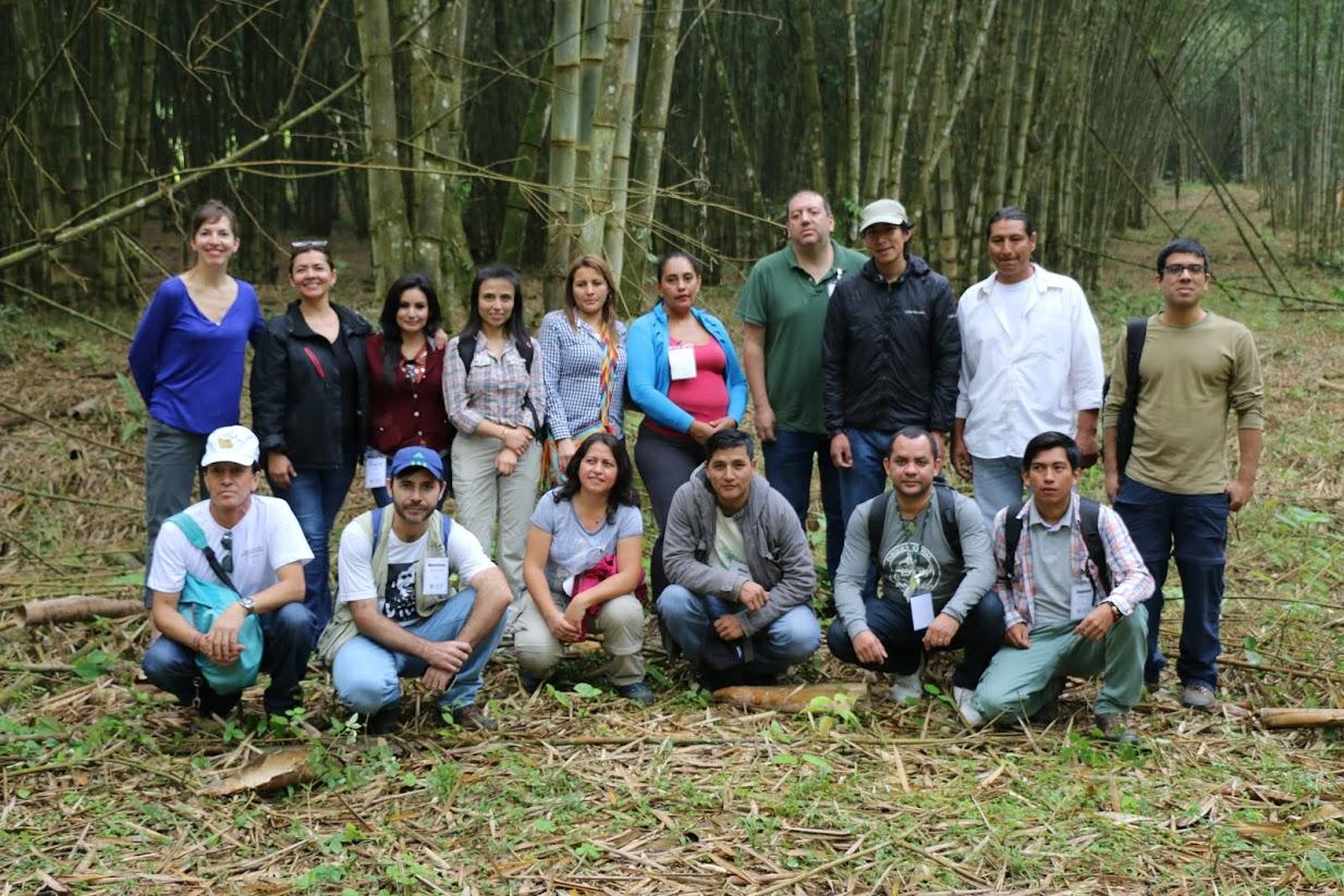 group field pic.jpg