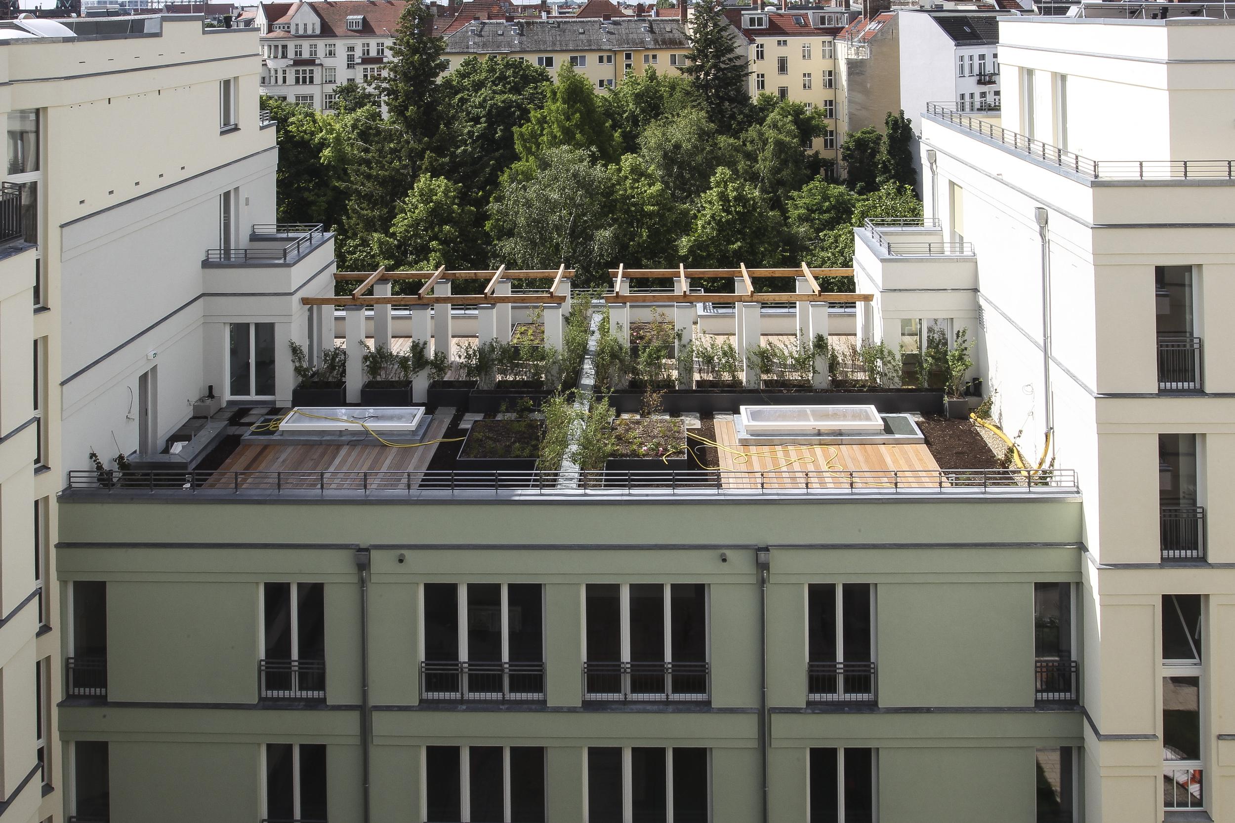 Projektdetail Dachterrassen