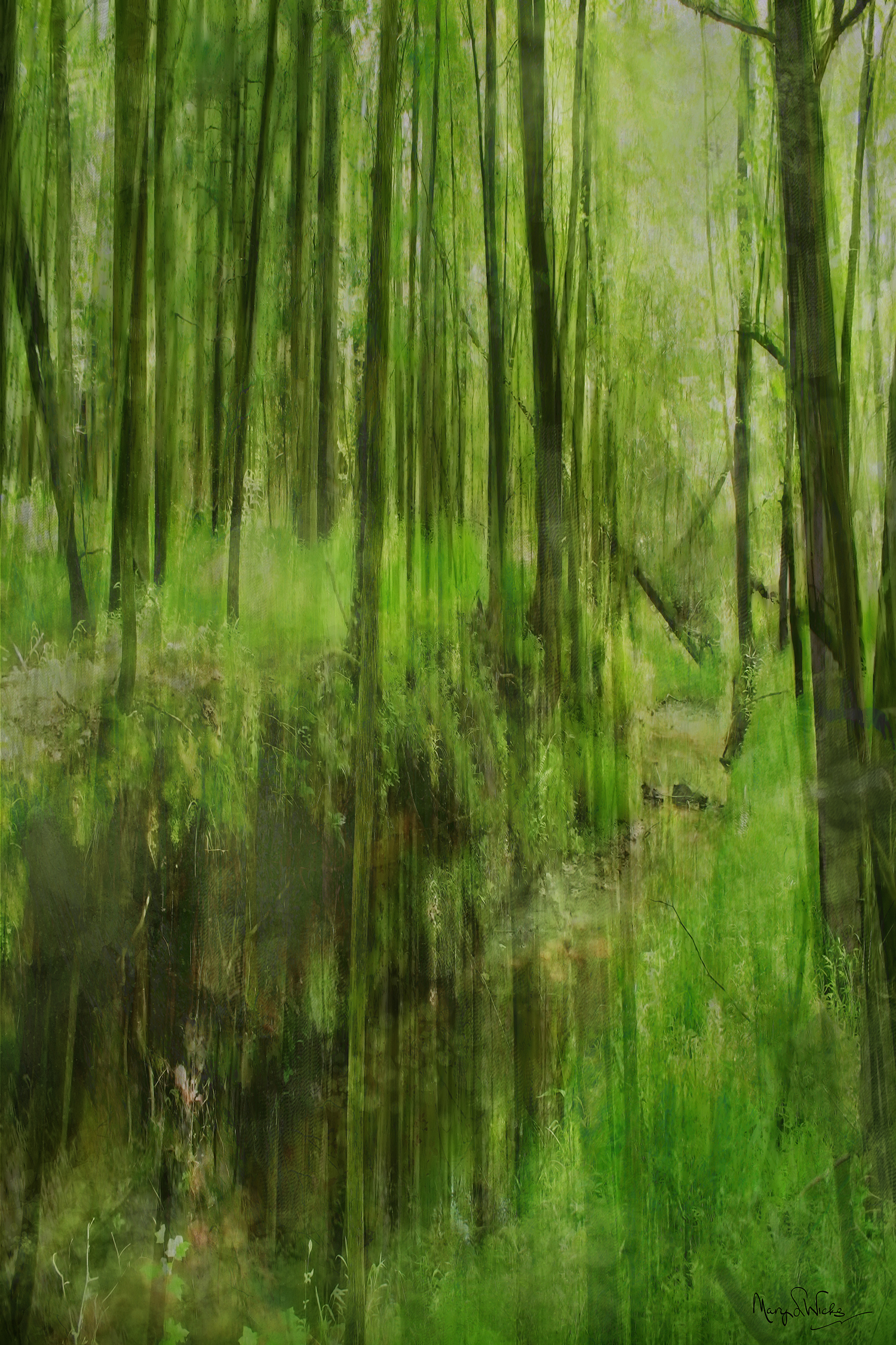 Painted Forest