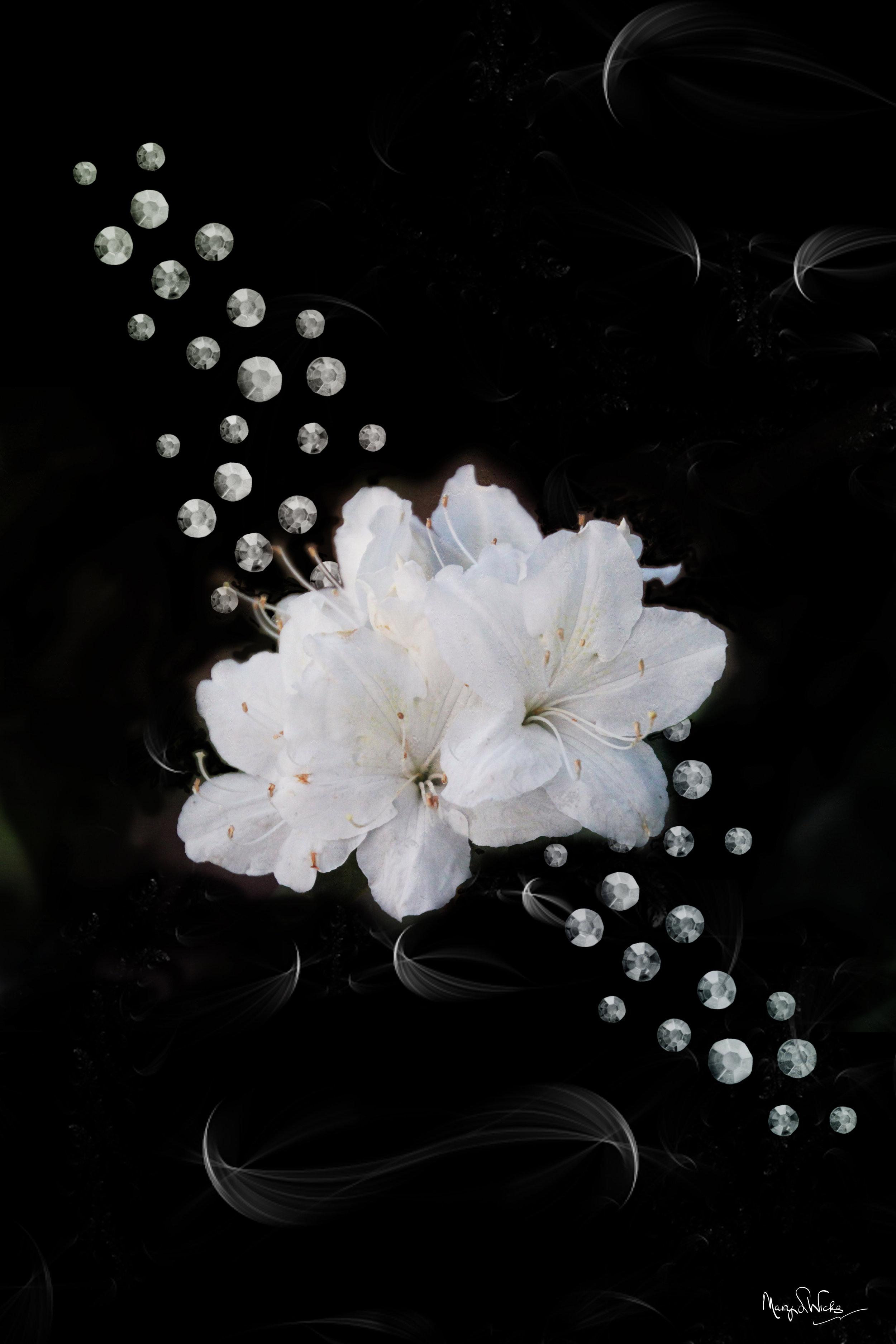 Azaleas and Diamonds Drift