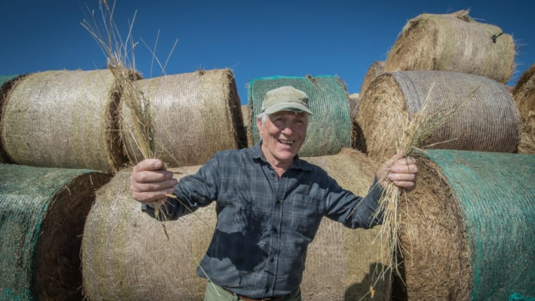 Taralga farmer Trevor Menzies, who was thrilled to receive donated hay despite being initially reluctant because he believed others needed it more.   Photo: Karleen Minney