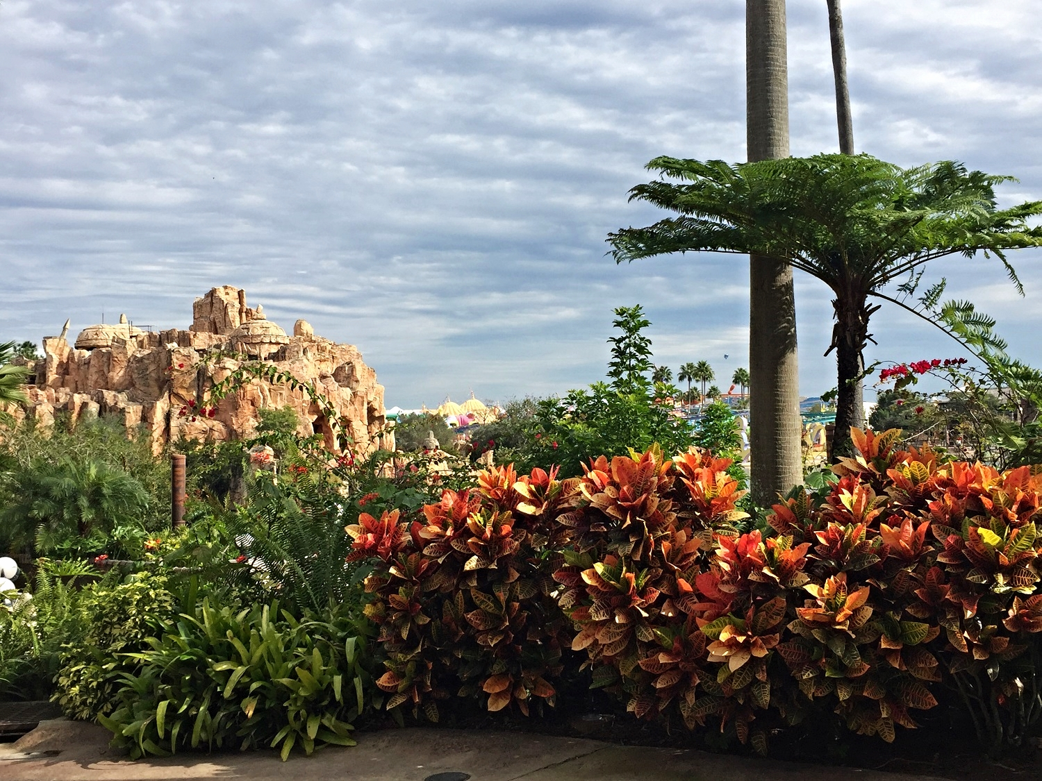 Partial view from the terrace behind Jurassic Park Discovery Center.