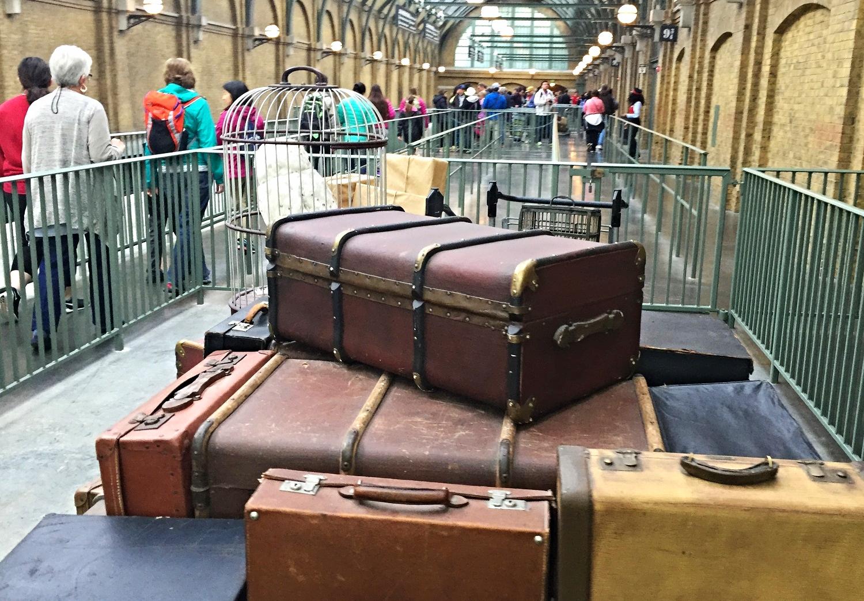 hedwig-and-luggage.jpg