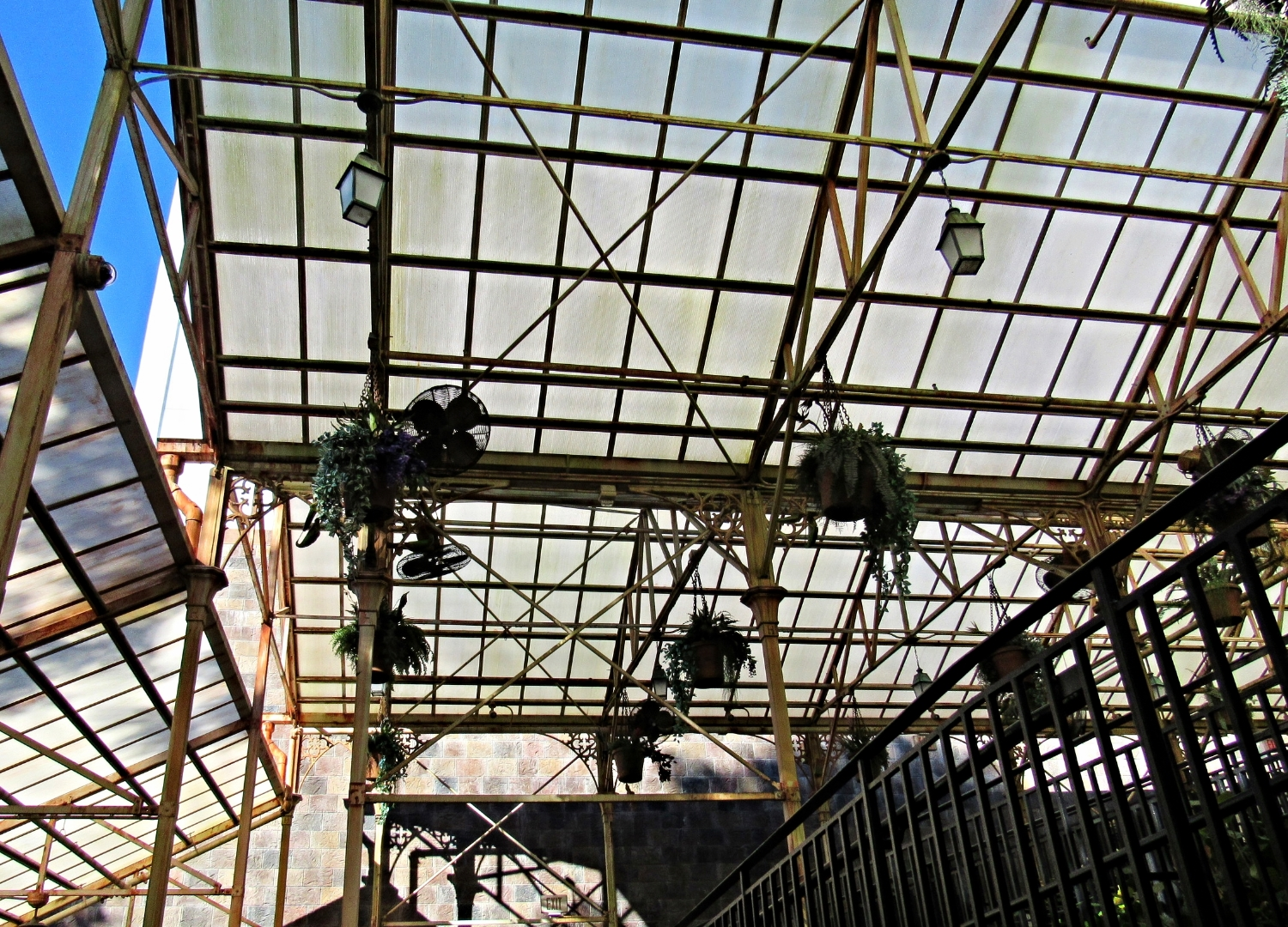 Plants Hanging in the Greenhouse in the Forbidden Journey Queue