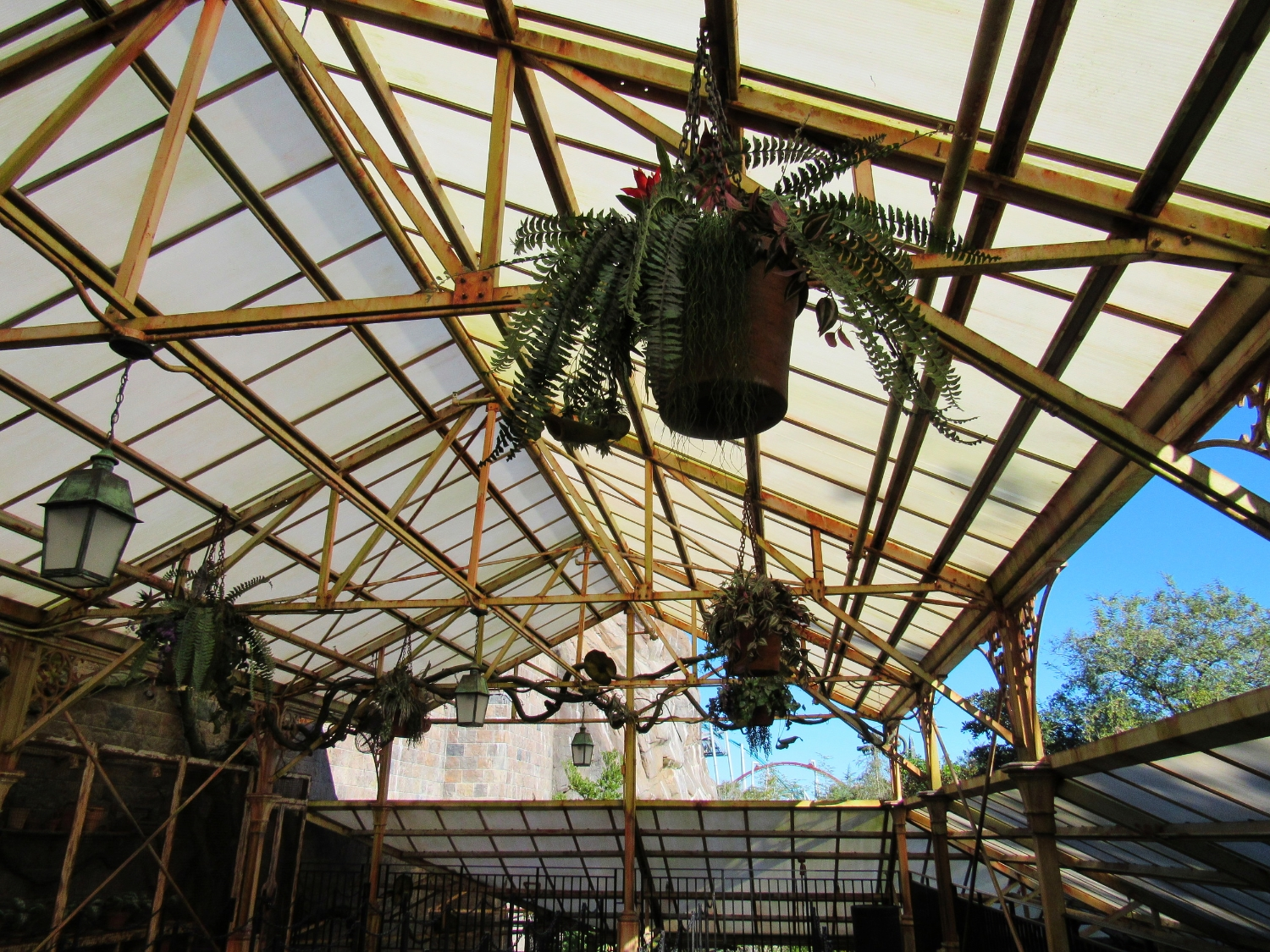 Plants Growing in the Greenhouse in the Forbidden Journey Queue