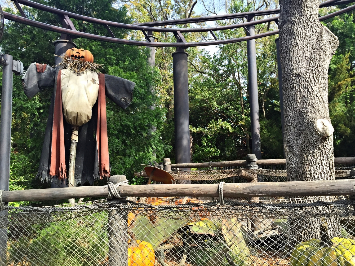 Flight of the Hippogriff Zips Above Hagrid's Pumpkin Patch